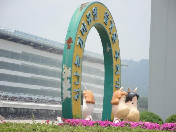 Seoul Racecourse Finish