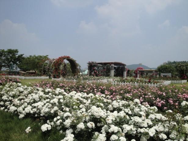 Seoul Racecourse Garden
