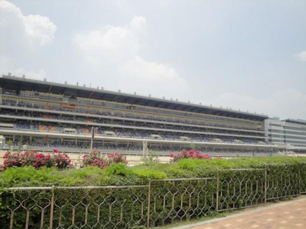 Seoul Racecourse Grandstand