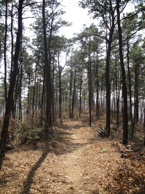 Hking Trail