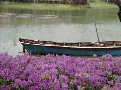 An Old Boat on a Lake