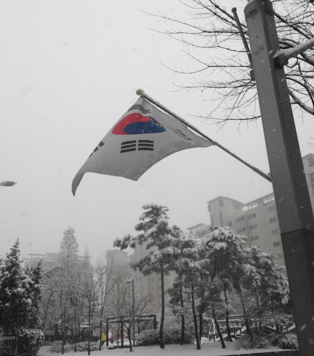 Flag of South Korea waving in the snowy wind