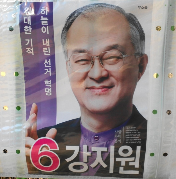 Jang Ji Won Korean Election 2012