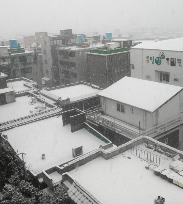 A few Snowy Rooftops in Incheon