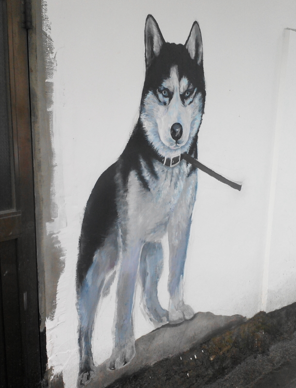 Wolf Husky Mural Painting in Guro Seoul