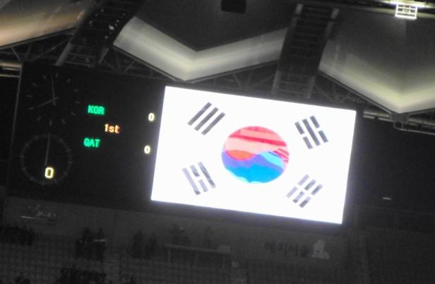 South Korea vs. Qatar - South Korean Flag