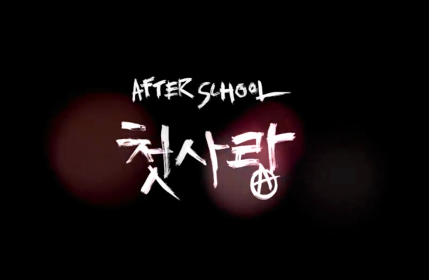After School First Love Banner