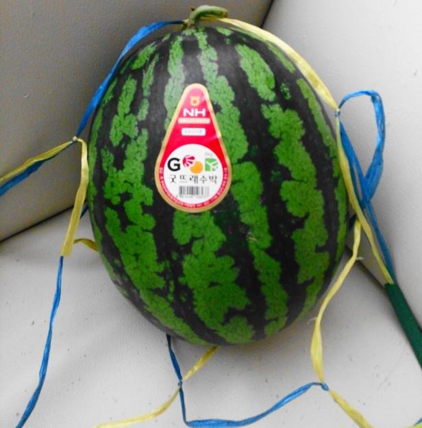 Korean Watermelon Summer 2013