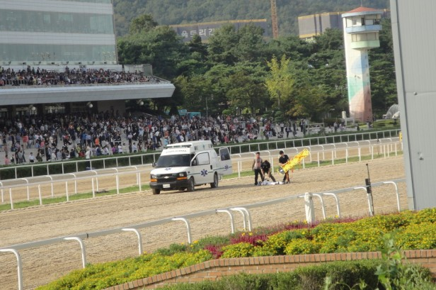 Seoul Racecourse Injuried Jockey