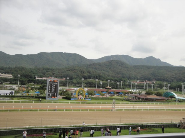Seoul Racecourse Overview