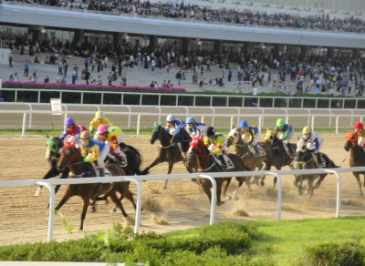 Seoul Racecourse Racing