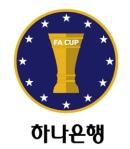 Korean FA Cup Logo 2013