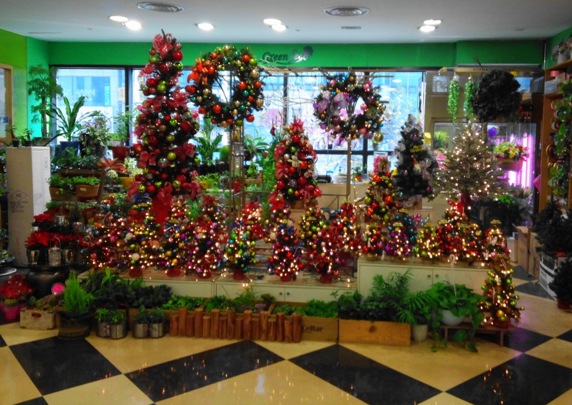 Christmas Trees Homeplus Gyesan