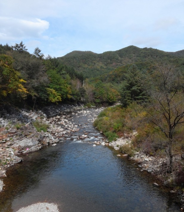 Herbnara Farm - Gangwon-Do River 1