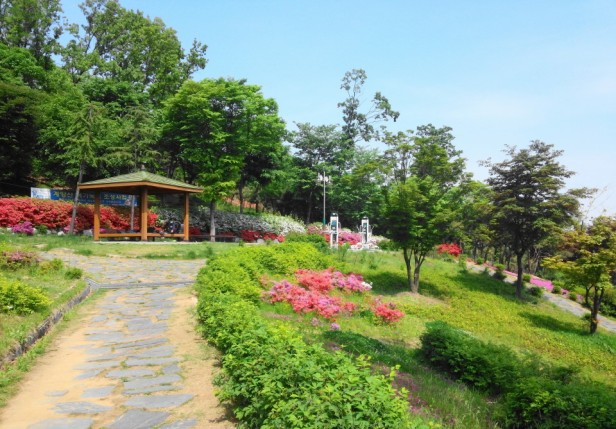 Imhak Park Incheon Pathway
