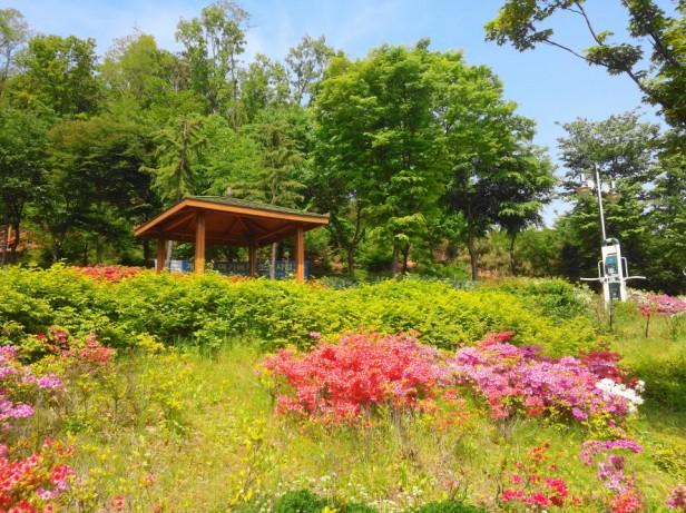 Imhak Park Incheon Seating Area