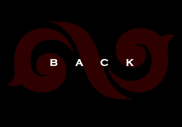 Infinite - Back Banner
