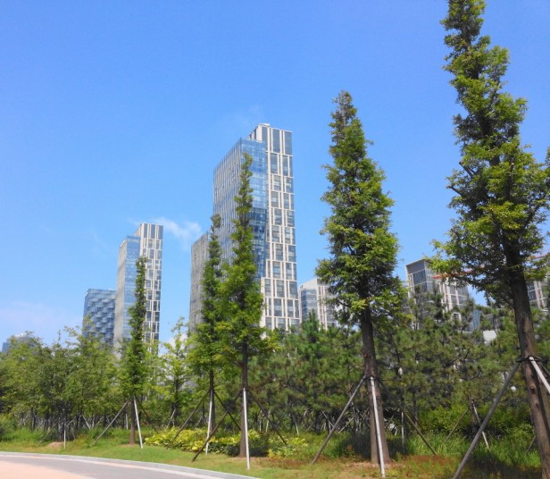 Songdo Central Park and Lake Incheon Wood