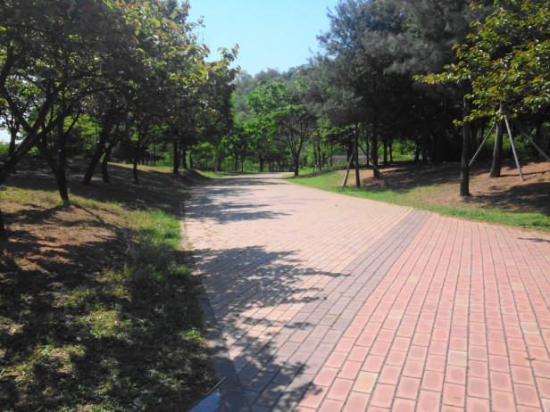 Seoul World Cup Park Clean Paths