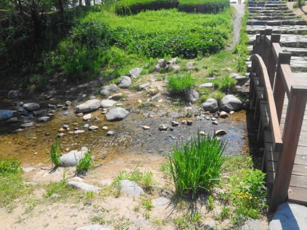 Seoul World Cup Park Stream