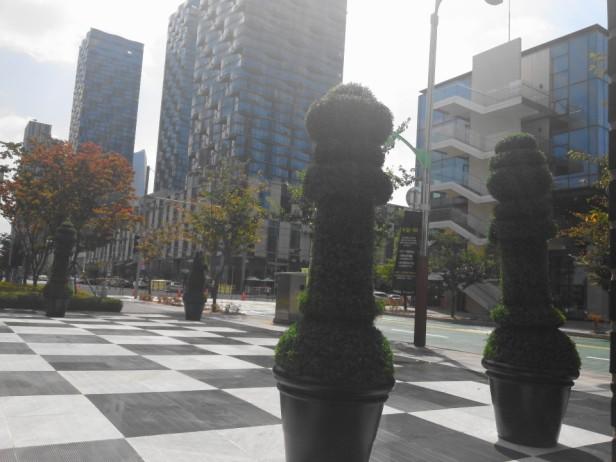 Songdo NC Cube Chess Bushes