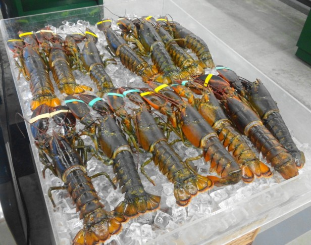 Fresh Lobster at Lotte Mart South Korea