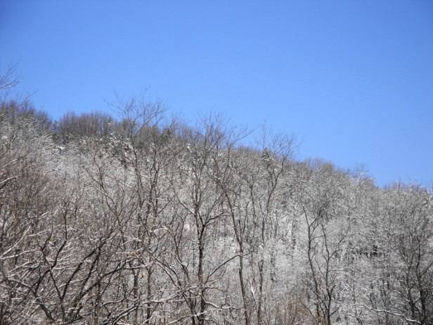 Wintery Hillside - Gyeyang Mountain Incheon
