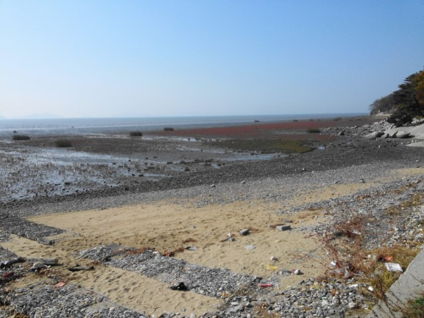 Dongmak Beach Ganghwa-do Fall