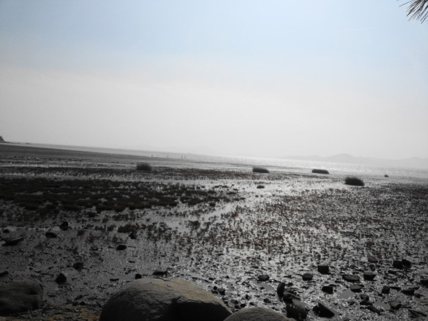 Dongmak Beach Ganghwa-do Mud