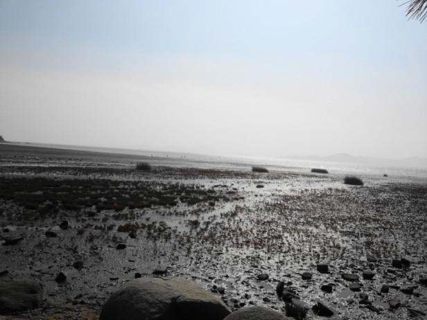 Dongmak Beach Ganghwa-do Mud