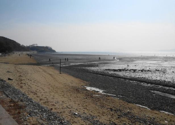 Dongmak Beach Ganghwa Island Silt