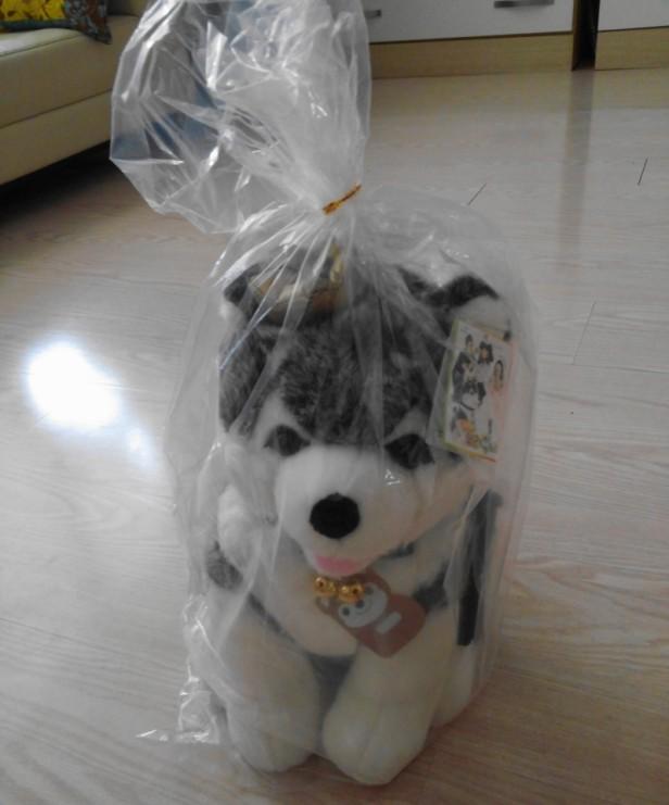 Brownie Gag Concert Toy South Korea Bag