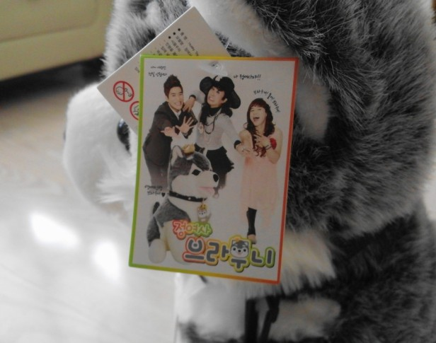 Brownie Gag Concert Toy South Korea Tag