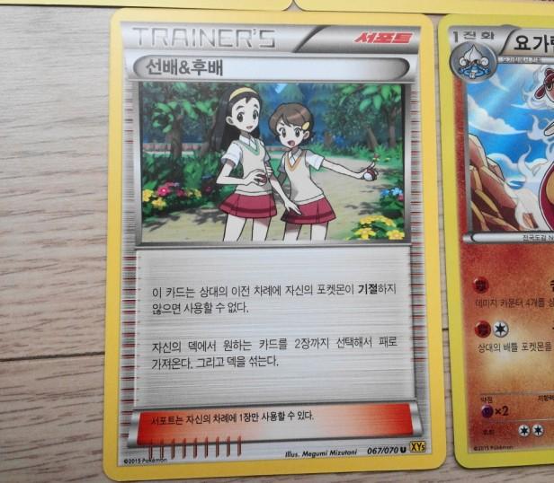 Korean Pokemon Cards XY teammates