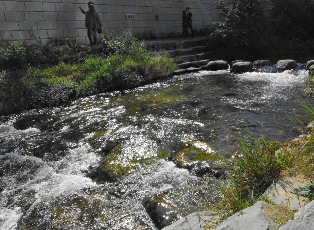 Cheonggyecheon Stream Canal Seoul White Water
