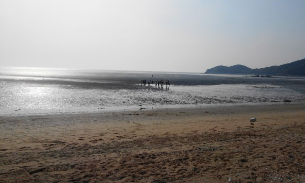 Muuido Island Incheon Hanagae Beach Mud flats