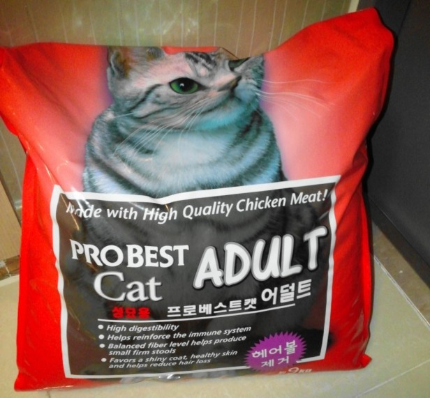 Probest Adult Dry Cat Food Gmarket 2015