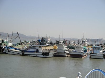 Gunsan Fishing Boats