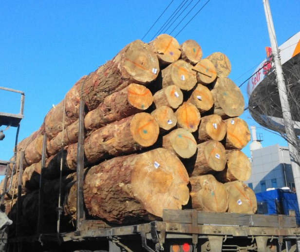 Wood Delivery Truck Incheon Korea