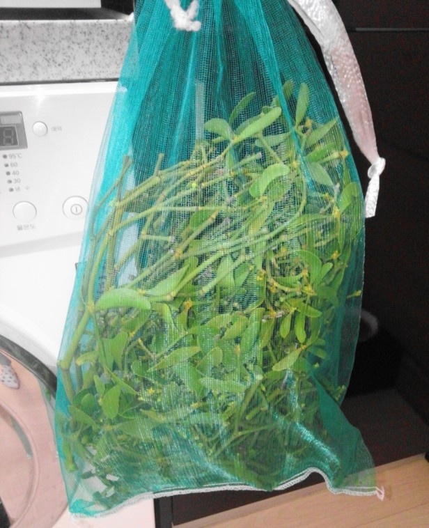 korean mistletoe tea - raw sack