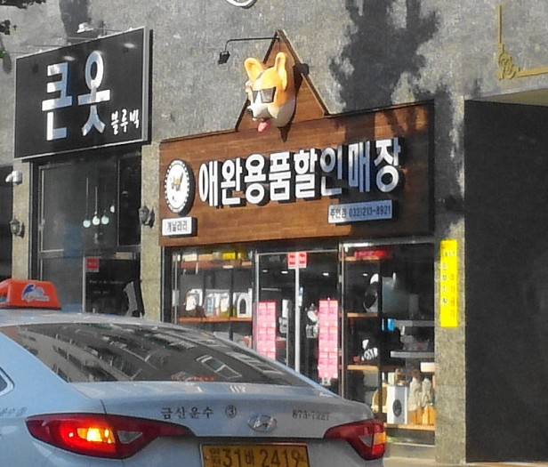Cool Looking Pet Shop Guwol-Dong Incheon