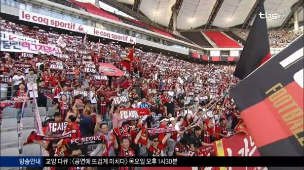 FC Seoul v Suwon Bluewings June 18 (1)
