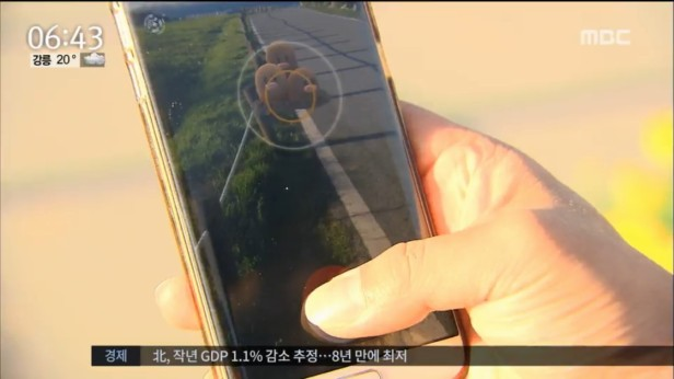 MBC News Pokemon Go Ulsan Busan (2)