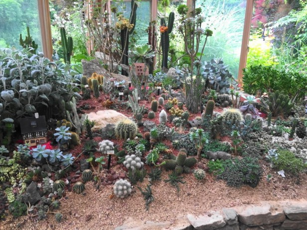 The Garden of Morning Calm Gapyeong KR (12)