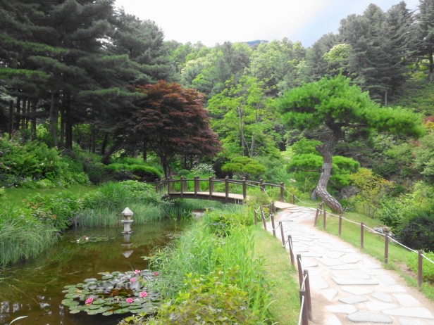 The Garden of Morning Calm Gapyeong KR (4)
