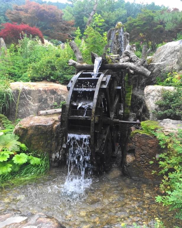 The Garden of Morning Calm Gapyeong KR (7)