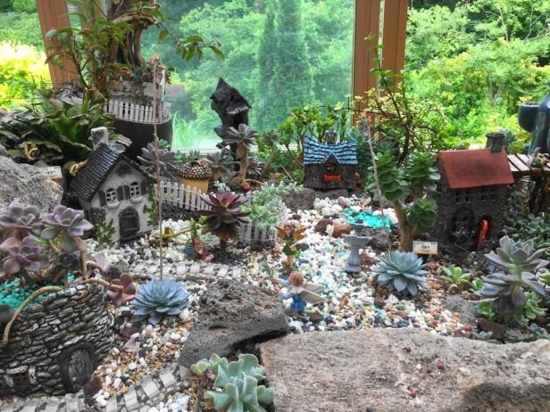 The Garden of Morning Calm Gapyeong KR catus