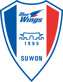 Suwon Samsung Bluewings Badge 2016