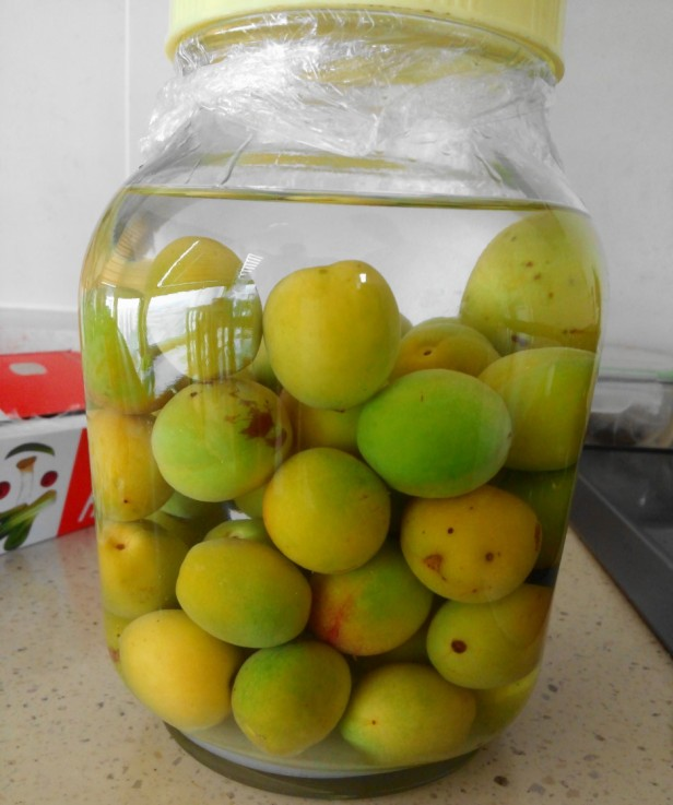 maehwasu-homemade-korean-plum-wine-10
