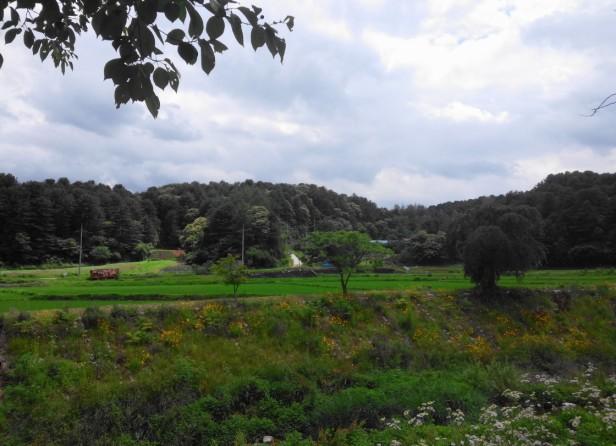 gyeonggi-do-countryside
